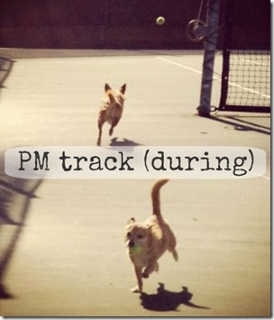 track during