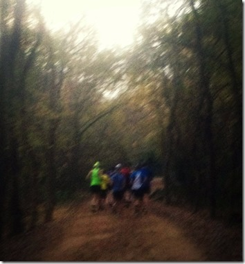 north face trail run