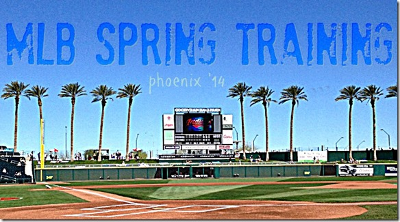 mlb spring training arizona 14