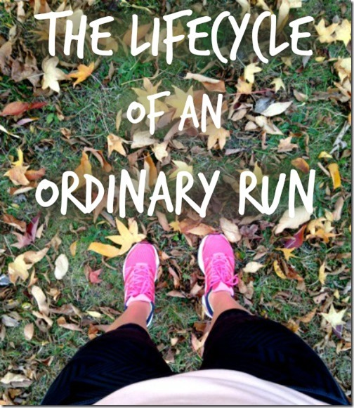 lifecycle of an ordinary run