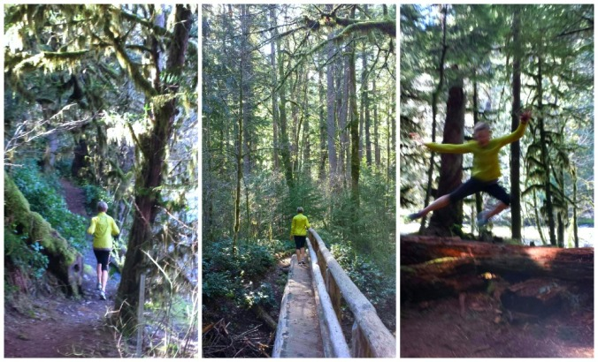 Mckenzie River Trail run